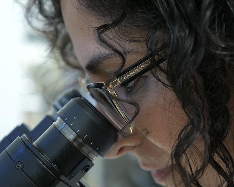 סרט תדמית באנגלית חברת מחקר קנאביס רפואי CANNASOUL